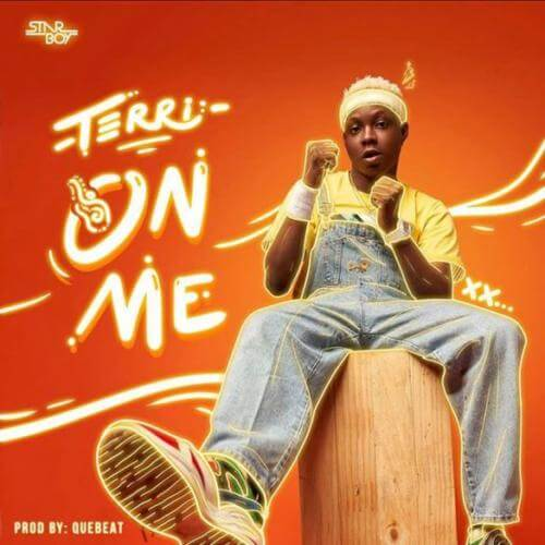"Terri-–-""On-Me""-Prod.-By-Quebeat"