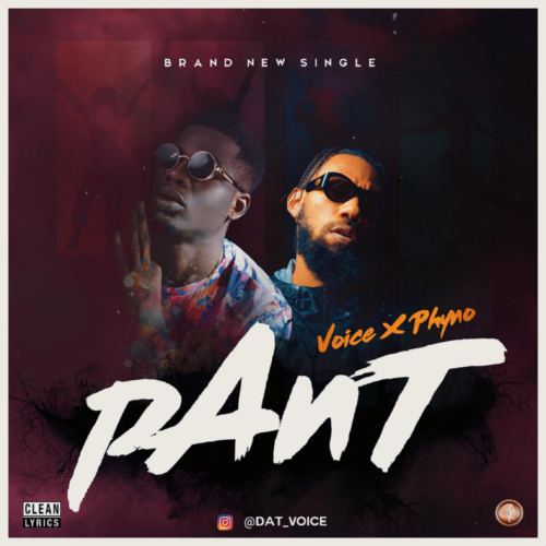 """Voice – """"Pant"""" ft. Phyno"""